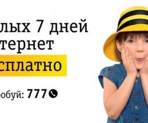 7 дней бесплатного интернета от Билайн