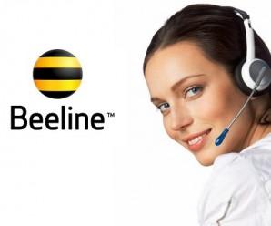 Как связаться с оператором Билайн по телефону